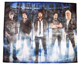 posterflags met afbeelding van de band destine